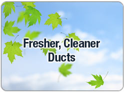 Cleaner Ducts
